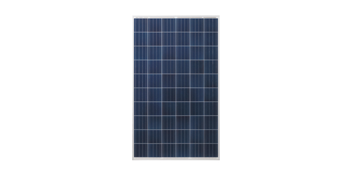 panel-solar-risen-poly-de-270W-solinc.com.mx